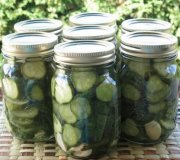Garlic Dill pickles (Lexibule)